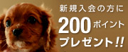 ILIO Online Store 新規会員登録特典